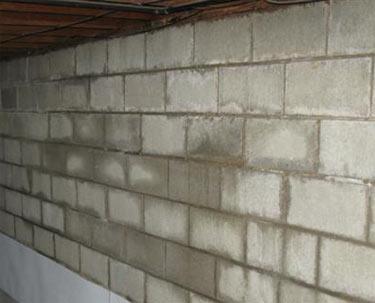 Water coming through basement wall